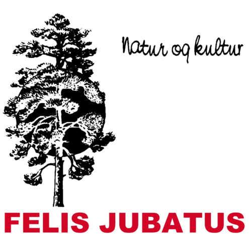 Felis Jubatus