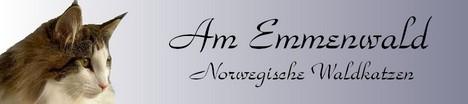 Am Emmenwald