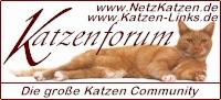 Netz Katzen Forum